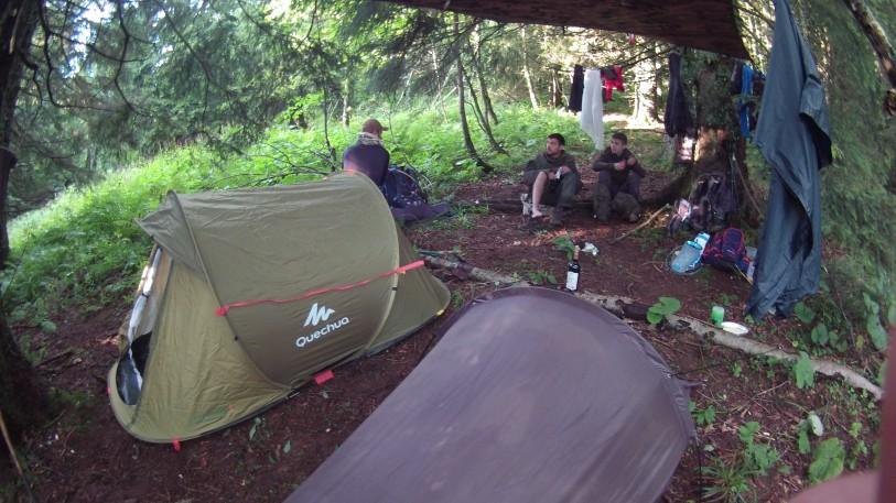 Campement dans une sapinière